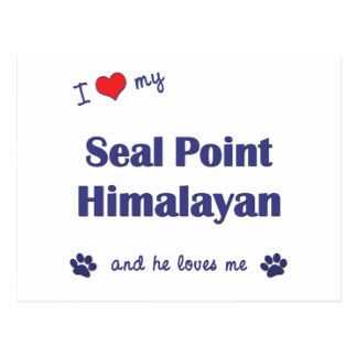 I Love My Seal Point Himalayan (Male Cat) Postcard