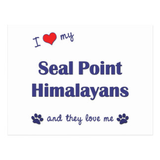 I Love My Seal Point Himalayans (Multiple Cats) Postcard