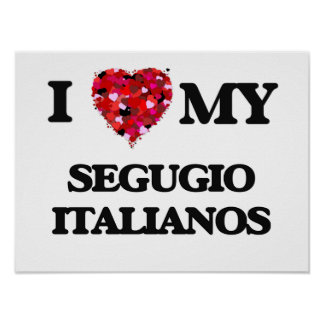 I love my Segugio Italianos Poster
