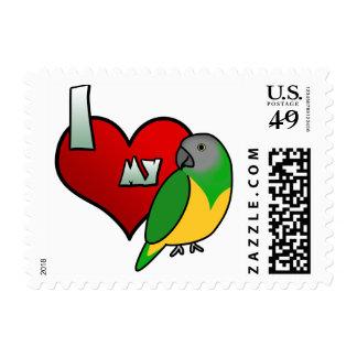 I Love my Senegal Parrot Stamps