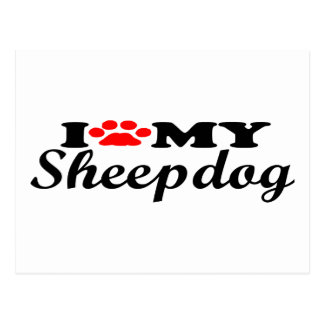 I Love My Sheepdog Postcard