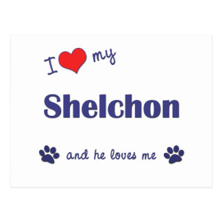 I Love My Shelchon (Male Dog) Postcards