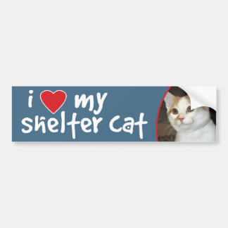 I Love My Shelter Cat Bumper Sticker - White Cat
