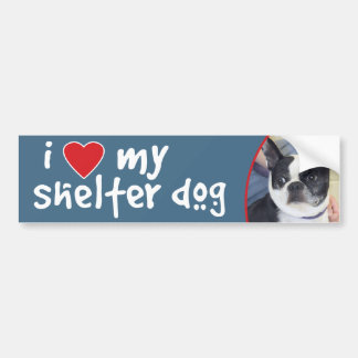 I Love My Shelter Dog-Boston Terrier Bumper Sticker