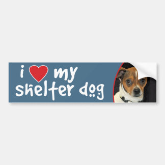 I Love My Shelter Dog Chihuahua Mix Bumper Sticker
