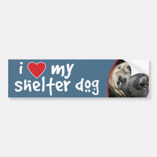 I Love My Shelter Dog English Mastiff Mix Bumper Sticker