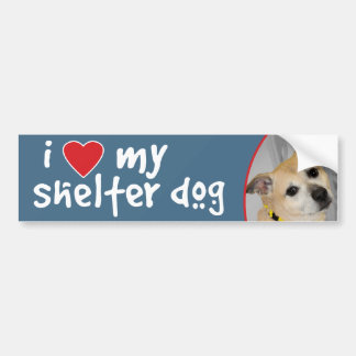 I Love My Shelter Dog-Pitbull Bumper Sticker/Decal Bumper Sticker