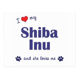 I Love My Shiba Inu (Female Dog) Postcard