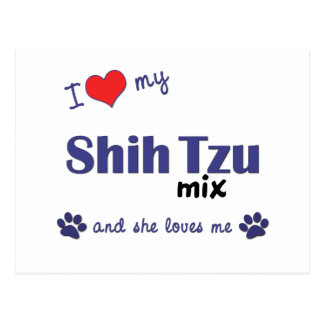I Love My Shih Tzu Mix (Female Dog) Postcard