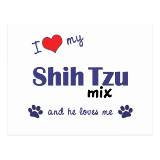 I Love My Shih Tzu Mix (Male Dog) Postcard