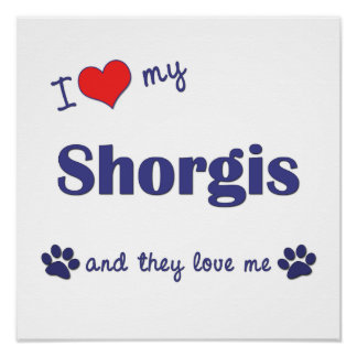 I Love My Shorgis (Multiple Dogs) Posters