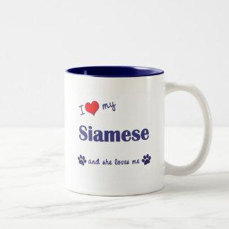 I Love My Siamese (Female Cat) Two-Tone Coffee Mug