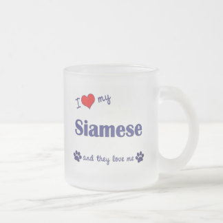 I Love My Siamese (Multiple Cats) 10 Oz Frosted Glass Coffee Mug
