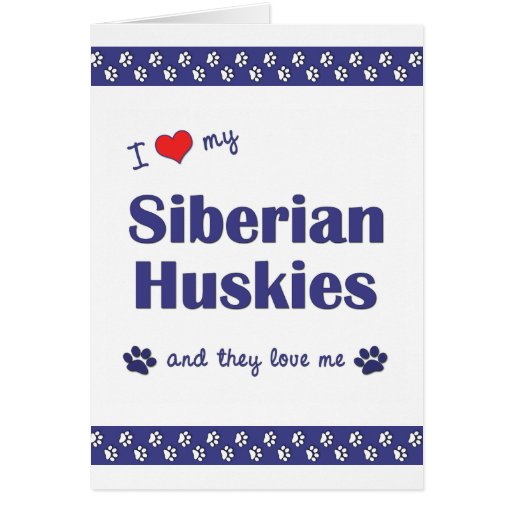 I Love My Siberian Huskies (Multiple Dogs) Stationery Note Card