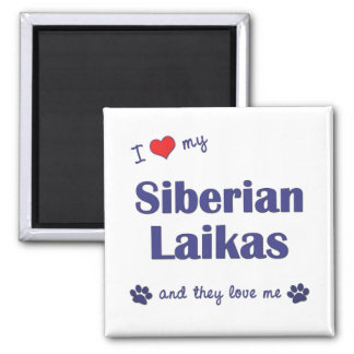 I Love My Siberian Laikas (Multiple Dogs) 2 Inch Square Magnet