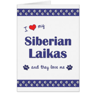 I Love My Siberian Laikas (Multiple Dogs) Greeting Card