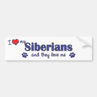 I Love My Siberians (Multiple Cats) Bumper Sticker