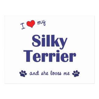 I Love My Silky Terrier (Female Dog) Postcard