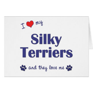 I Love My Silky Terriers (Multiple Dogs) Greeting Card