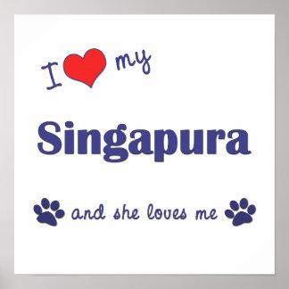 I Love My Singapura (Female Cat) Posters