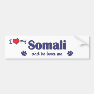 I Love My Somali (Male Cat) Bumper Sticker