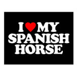I LOVE MY SPANISH HORSE POSTCARD