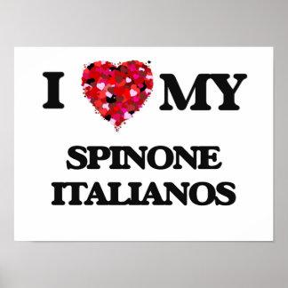 I love my Spinone Italiano Poster
