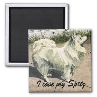I love my Spitz Dog Magnet