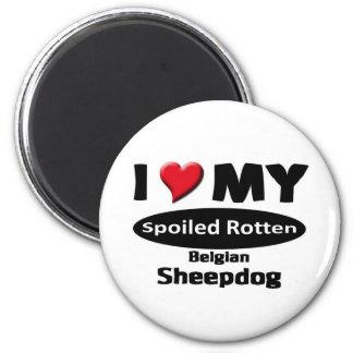 I love my spoiled rotten Belgian Sheepdog Fridge Magnet