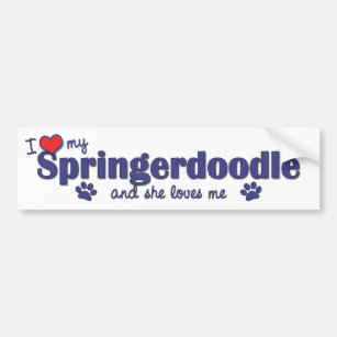 I Love My Springerdoodle (Female Dog) Bumper Sticker