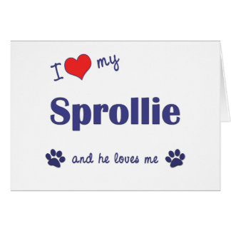 I Love My Sprollie Male Dog Greeting Cards