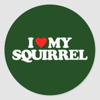 I LOVE MY SQUIRREL CLASSIC ROUND STICKER