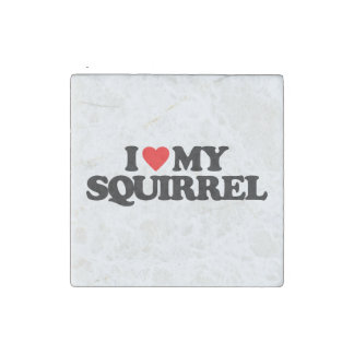 I LOVE MY SQUIRREL STONE MAGNET