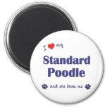 I Love My Standard Poodle (Female Dog) Fridge Magnets