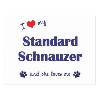 I Love My Standard Schnauzer (Female Dog) Postcard