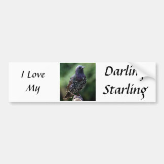 I love my starling bumper sticker