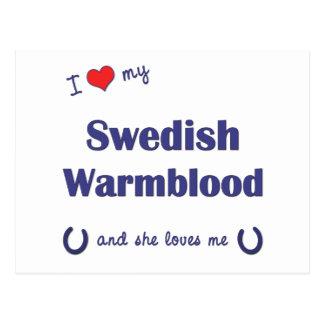 I Love My Swedish Warmblood (Female Horse) Postcards