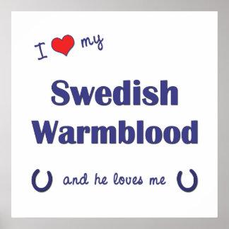 I Love My Swedish Warmblood (Male Horse) Poster