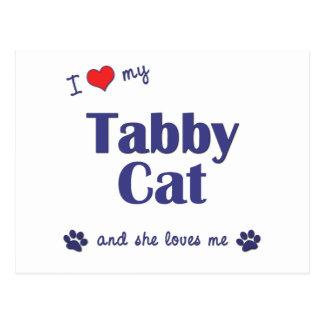 I Love My Tabby Cat (Female Cat) Postcard