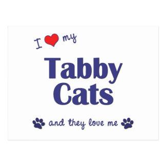 I Love My Tabby Cats (Multiple Cats) Postcard