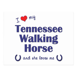 I Love My Tennessee Walking Horse (Female Horse) Postcard