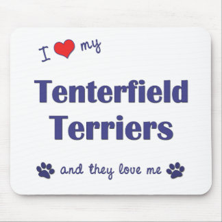I Love My Tenterfield Terriers (Multiple Dogs) Mouse Pad