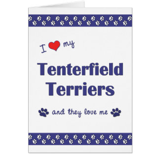 I Love My Tenterfield Terriers (Multiple Dogs) Stationery Note Card