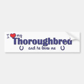 I Love My Thoroughbred (Male Horse) Bumper Sticker