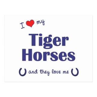 I Love My Tiger Horses (Multiple Horses) Postcard