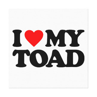 I LOVE MY TOAD CANVAS PRINT