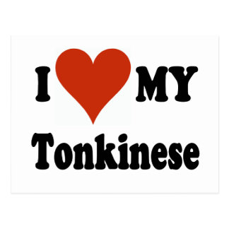 I Love My Tonkinese Cat Gifts and Apparel Postcard