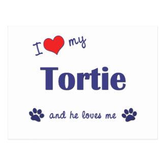I Love My Tortie (Male Cat) Postcard