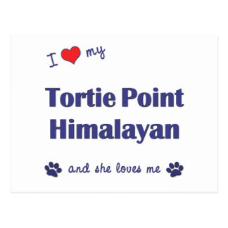 I Love My Tortie Point Himalayan (Female Cat) Postcard