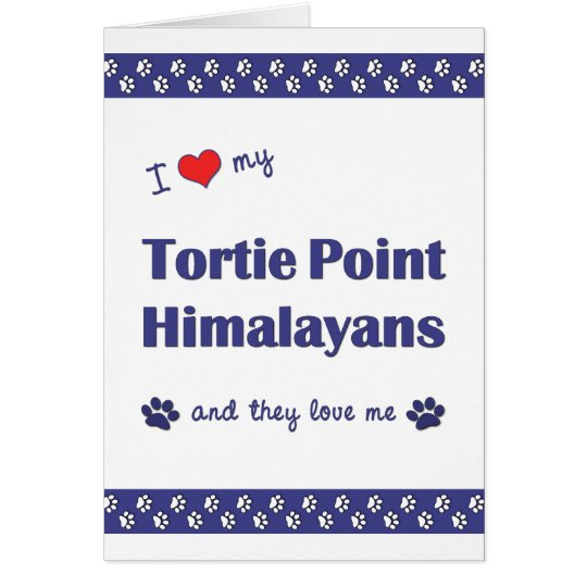 I Love My Tortie Point Himalayans (Multiple Cats) Card